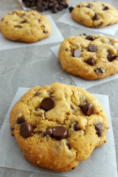 Pumpkin Chocolate Chip Cookies (GF)